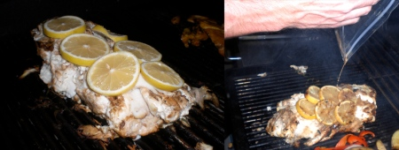 spank-my-halibut-grill-combo