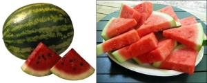 watermelon-combo