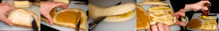 elvis-sinwich-spread