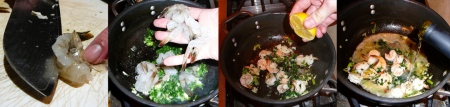 trampy-scampi-shrimp