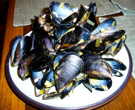 mussels-empty-shells